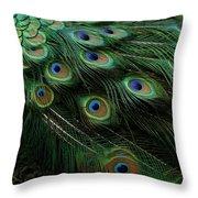 Pure Peacock Throw Pillow