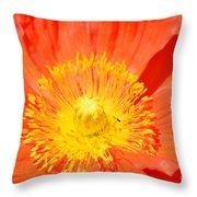 Pure Poppy Sunshine Throw Pillow