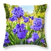 Pure Sapphire Iris Throw Pillow