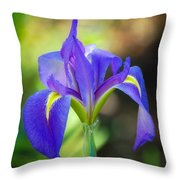 Pure Simple Beautiful Throw Pillow