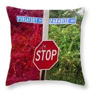 Purgatory Or Paradise Throw Pillow