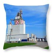 Purina Factory Throw Pillow