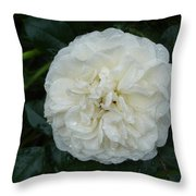 Purity And Perfection Throw Pillow