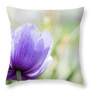 Purple Anemore Flower Throw Pillow