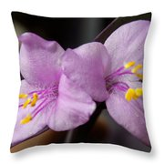 Purple Purple And Yellow Throw Pillow