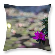 Purple-1 Throw Pillow