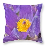 Purple And Gold - Bright Throw Pillow