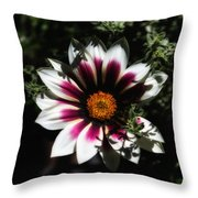 Purple And Orange Glow Throw Pillow