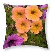 Purple And Peach Throw Pillow