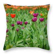Purple And Red Tullips Throw Pillow