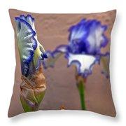 Purple And White Bearded Iris Bud Throw Pillow