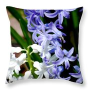 Purple And White Hyacinth Throw Pillow