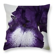 Purple And White Iris Bloom Throw Pillow