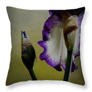 Purple And White Iris Flower Throw Pillow