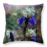 Purple And White Irises 6647 Dp_2 Throw Pillow