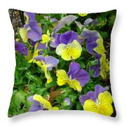 Purple And Yellow Pansies Throw Pillow
