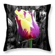 Purple And Yellow Tulip Throw Pillow