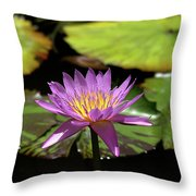 Purple And Yellow Water Lily Throw Pillow