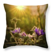 Purple Aster Glow Throw Pillow by Beth Sawickie