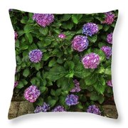 Purple Balls Of Color 2 Throw Pillow