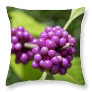 Purple Beautyberries Throw Pillow