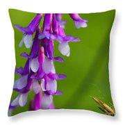 Purple Bird Vetch Plant  Throw Pillow