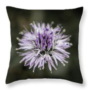 Purple Bloom Throw Pillow