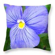 Purple Blue Pansey Throw Pillow