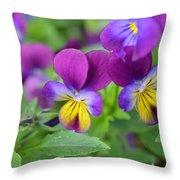 Purple Blue Yellow Throw Pillow