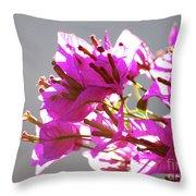 Purple Bougainvillea Flower Throw Pillow