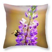 Purple Buzz Throw Pillow