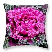Purple Cabbage Throw Pillow