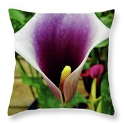 Purple - Calla Lily - Bloom Throw Pillow