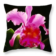 Purple Cattleya Throw Pillow