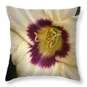 Purple Center Throw Pillow