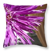 Purple Chinese Aster Throw Pillow
