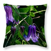 Purple Clamatis Bells Throw Pillow