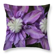 Purple Clematis 2 Throw Pillow