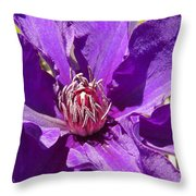 Purple Clematis IIi Throw Pillow