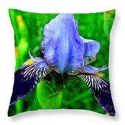 Purple Coated Iris Throw Pillow