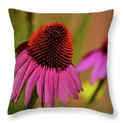 Purple Coneflower Throw Pillow