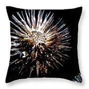 Purple Coneflower Seed Head Throw Pillow