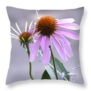 Purple Cornflowers Throw Pillow