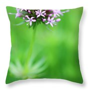 Purple Crosswort Flower Throw Pillow