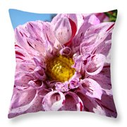 Purple Dahlia Flowers Pink Floral Art Prints Canvas Garden Baslee Troutman Throw Pillow