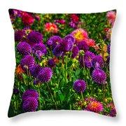 Purple Dahlias Throw Pillow