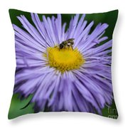 Purple Daisy And Guest Throw Pillow