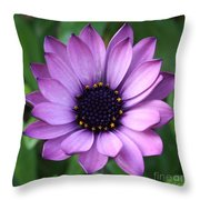 Purple Daisy Square Throw Pillow