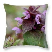 Purple Deadnettle Bloom Throw Pillow