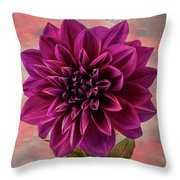 Purple Dhalia Throw Pillow